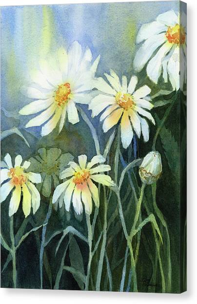 Daisies Canvas Print - Daisies Flowers  by Olga Shvartsur