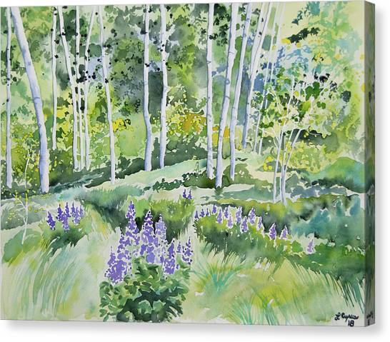 Watercolor - Early Summer Aspen And Lupine Canvas Print