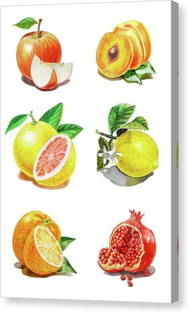 Packaging Canvas Print - Watercolor Food Illustration Fruits by Irina Sztukowski