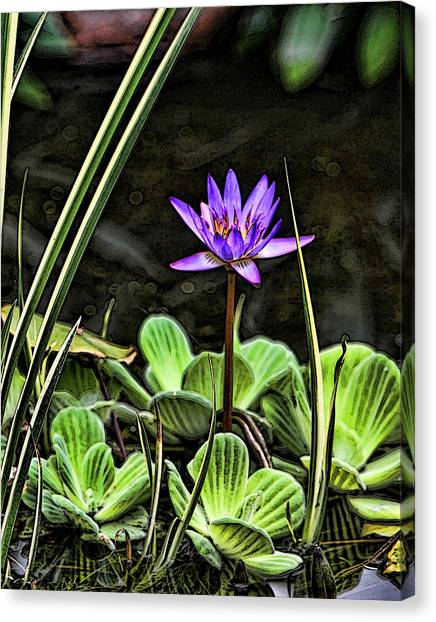 Watercolor Lily Canvas Print