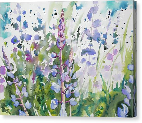 Watercolor - Lupine Wildflowers Canvas Print