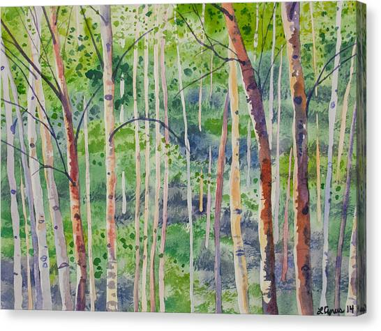 Watercolor - Magical Aspen Forest After A Spring Rain Canvas Print