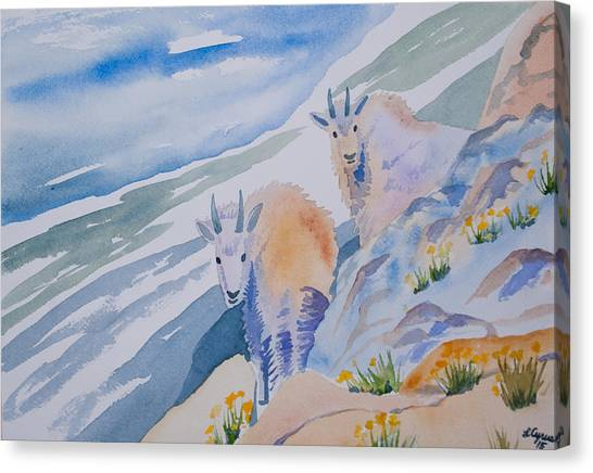 Watercolor - Mountain Goats On Quandary Canvas Print