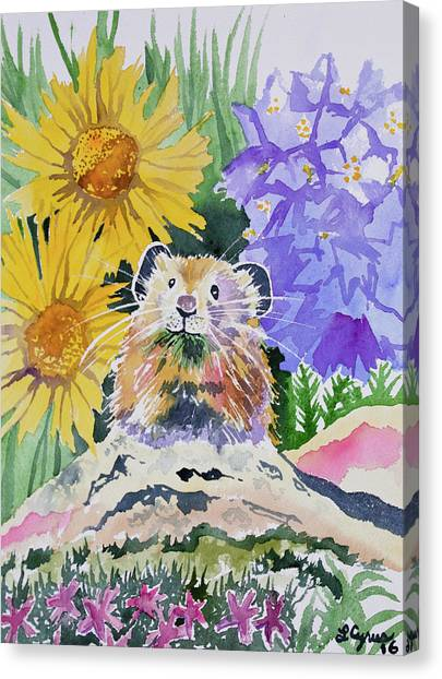 Watercolor - Pika With Wildflowers Canvas Print