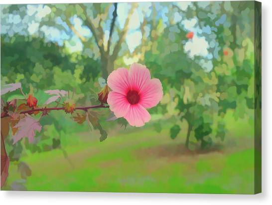 Florida Hibiscus Canvas Prints Page 7 Of 13 Fine Art America