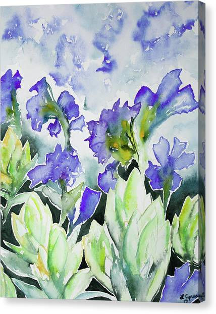 Watercolor - Rocky Mountain Wildflowers Canvas Print
