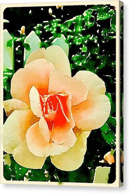 Canvas Print - Watercolor Rose by Modern Art