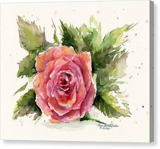 Plant Canvas Print - Watercolor Rose by Olga Shvartsur