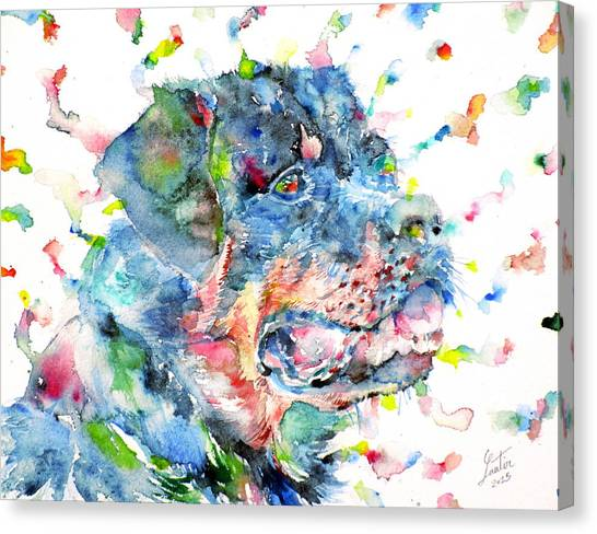Rottweilers Canvas Print - Watercolor Rottweiler by Fabrizio Cassetta