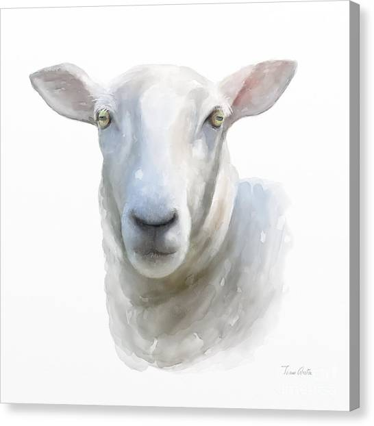 Canvas Print featuring the painting Watercolor Sheep by Ivana Westin