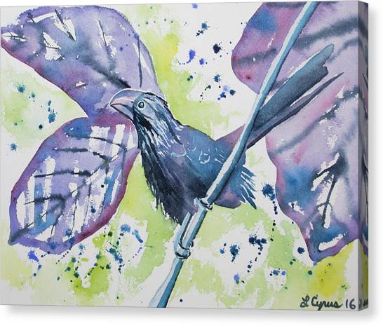 Watercolor - Smooth-billed Ani Canvas Print