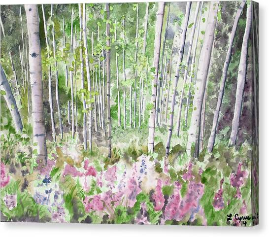 Watercolor - Summer Aspen Glade Canvas Print