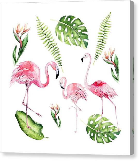 Canvas Print featuring the painting Watercolour Flamingo Family by Georgeta Blanaru
