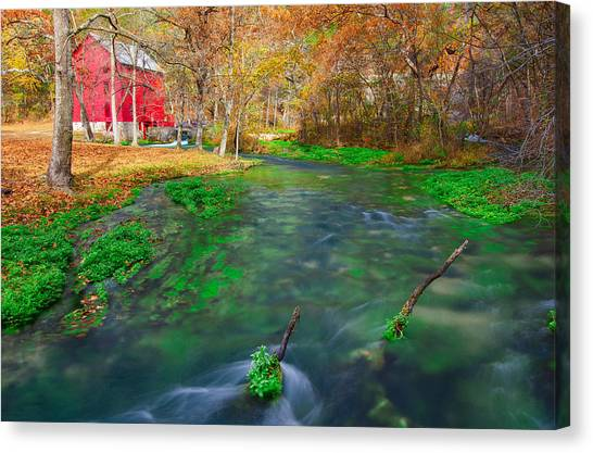 Watercress Canvas Print - Watercress At Alley Spring  by Jackie Novak