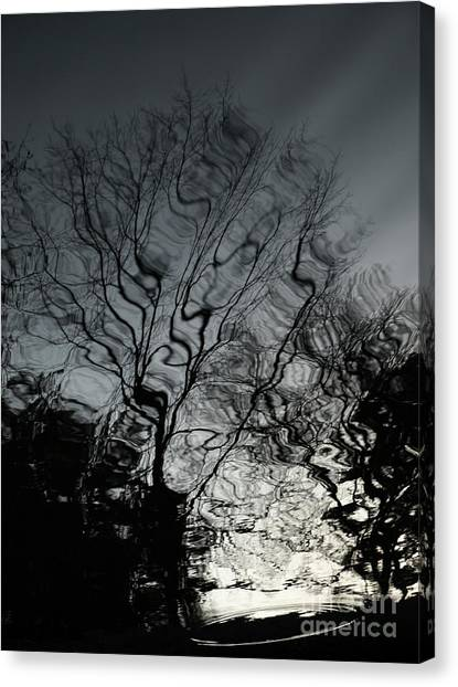 Watereflct4 Canvas Print