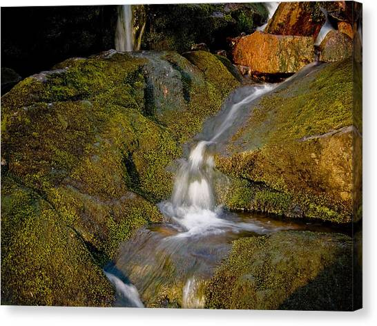 Waterfall At Dawn Canvas Print