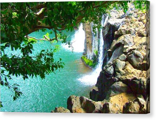 Waterfall At Peter Pan's Treehouse Canvas Print