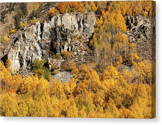 Canvas Print featuring the photograph Waterfall, Bishop Creek Canyon by Stuart Gordon