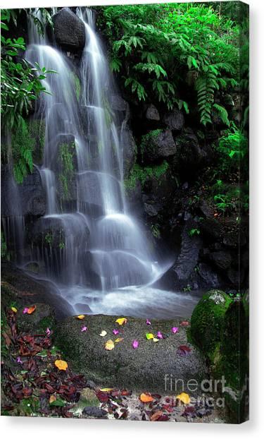 Spring Scenery Canvas Print - Waterfall by Carlos Caetano