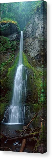 Olympic National Park Canvas Print - Waterfall In Olympic National Rainforest by Panoramic Images