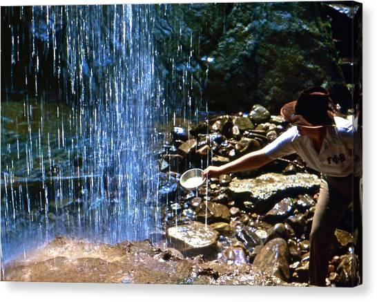 Waterfall Panner Canvas Print