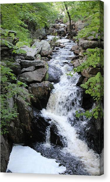 Waterfall Pillsbury State Park Canvas Print