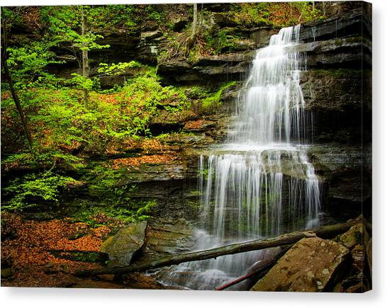 Waterfalls On Little Three Mile Run Canvas Print