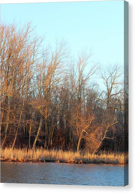 Waters Edge 2 Canvas Print