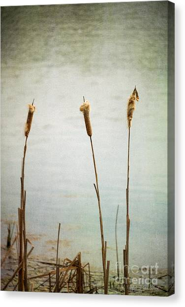 Water's Edge No. 2 Canvas Print