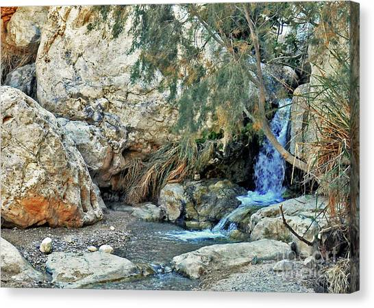 Mountain Caves Canvas Print - Waters Of Ein Gedi by Lydia Holly