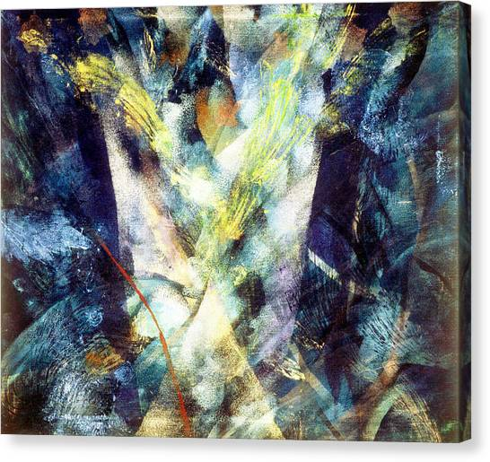 Waterspout Canvas Print by Sue Reed