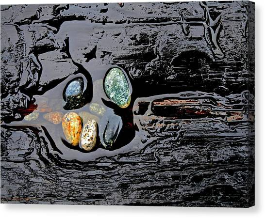 Water,stones And Wood Canvas Print