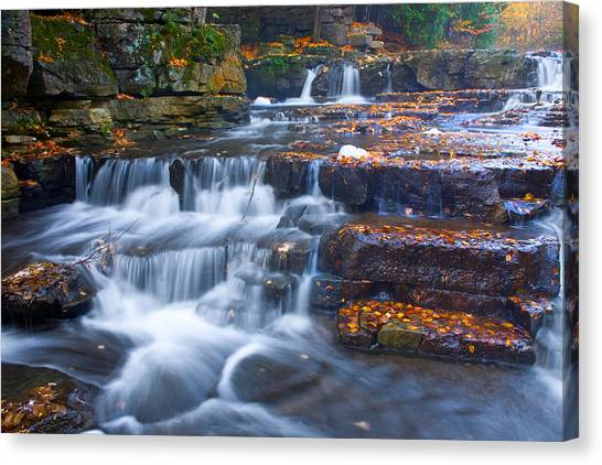 Watery Steps Canvas Print