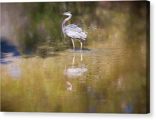 Watery World - Canvas Print