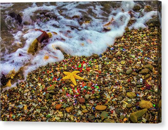 Saltwater Life Canvas Print - Wave Washing Over Starfish by Garry Gay