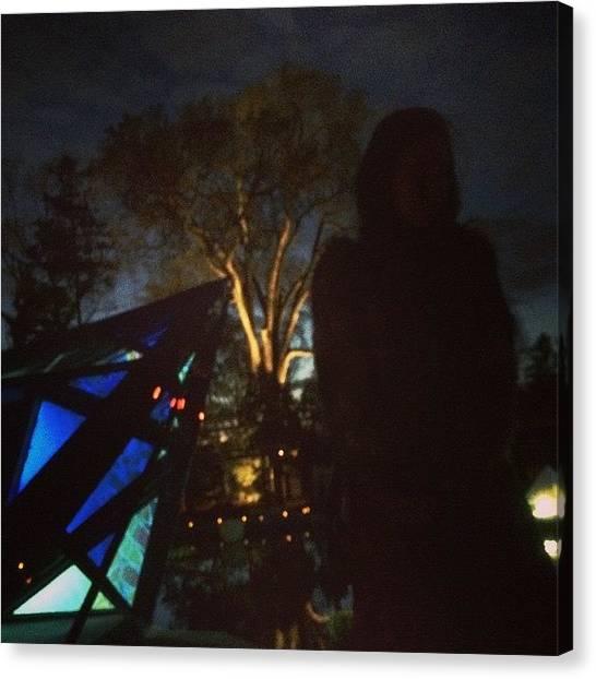 Installation Art Canvas Print - Night Lights At Wave Hill by Jenna Kraus