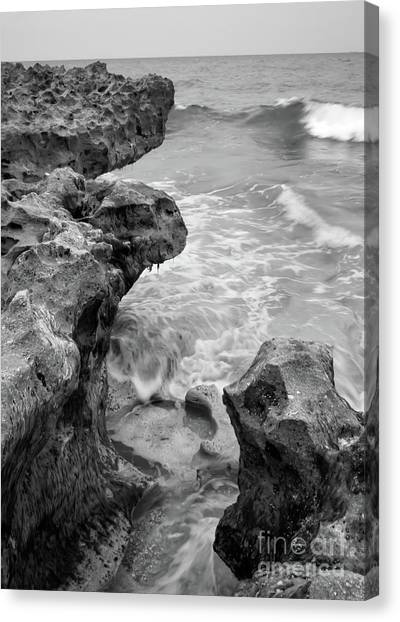 Waves And Coquina Rocks, Jupiter, Florida #39358-bw Canvas Print
