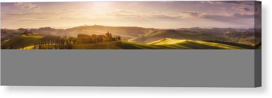 Cypress Canvas Print - Waves Of Light by Javier De La
