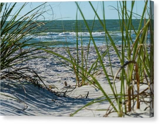 Waves Through The Grass Canvas Print