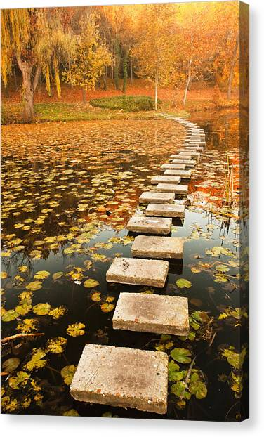 Way In The Lake Canvas Print