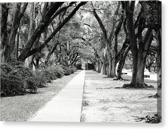 Way To Success Canvas Print by Gracey Tran