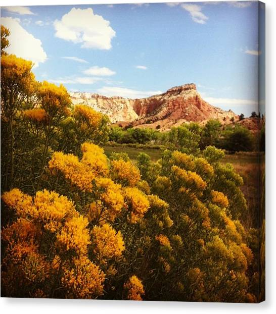 Red Rock Canvas Print - Ghost Ranch, New Mexico by Laurie White