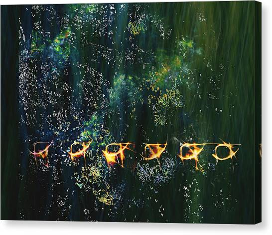 Canvas Print featuring the photograph We Are Star Dust #1 by Dutch Bieber