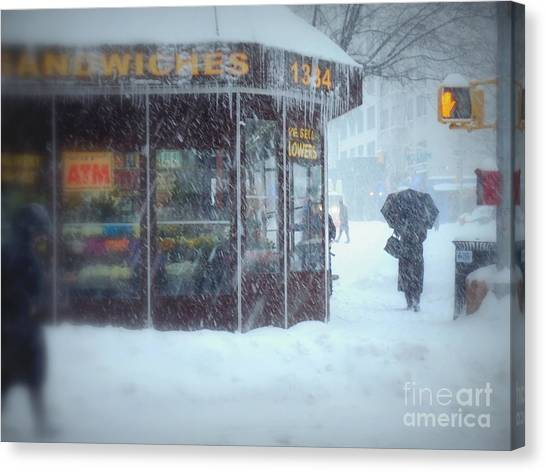 We Sell Flowers - Winter In New York Canvas Print
