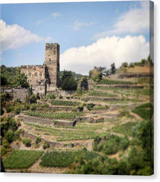 Fantasy Canvas Print - Rhine River Castle And Winery by Nancy Ingersoll