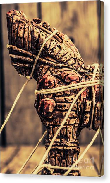 Turkeys Canvas Print - Weapon Of Mass Construction by Jorgo Photography - Wall Art Gallery