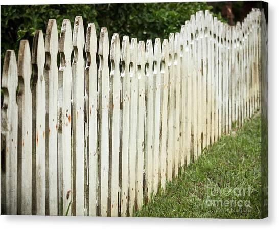 Weathered Fence Canvas Print
