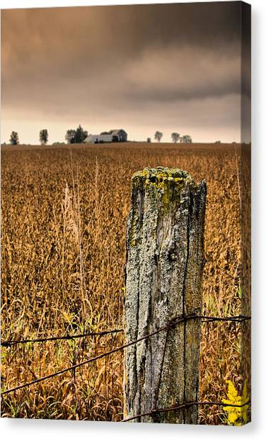 Weathered Wire..  Canvas Print by Russell Styles