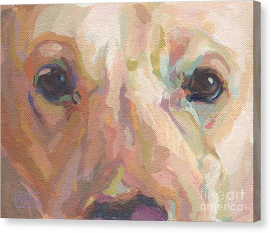 Yellow Lab Canvas Print - Webster by Kimberly Santini