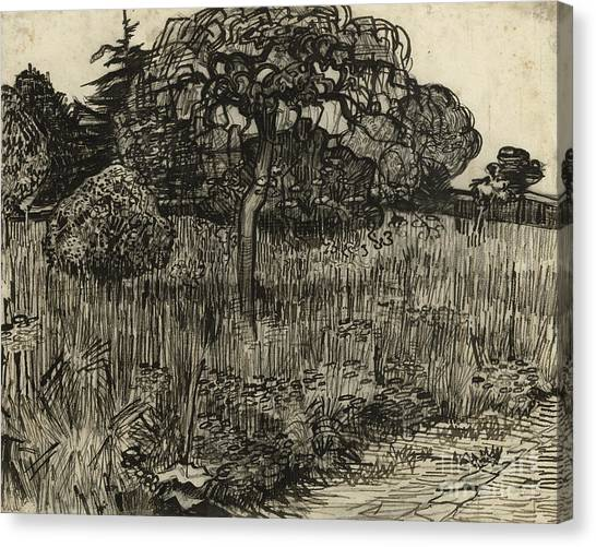 Weeping Willows Canvas Print - Weeping Tree by Vincent Van Gogh